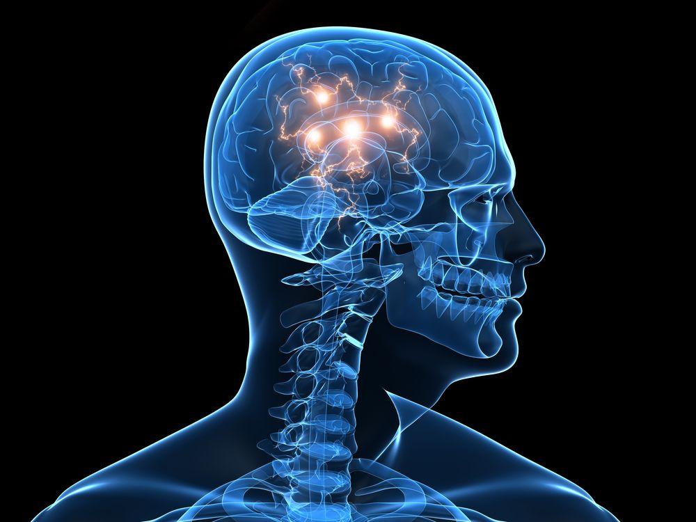 Обнаружен белок, отвечающий за развитие рака мозга
