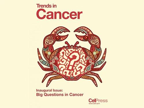 Восемь главных вопросов в изучении рака