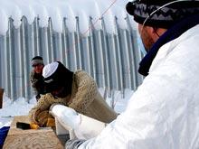 Бактерии из ледников — потенциальное оружие против рака, открыли биологи