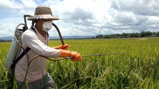 Пестициды. Здоровое питание и борьба с раком