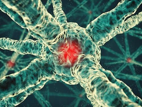 Изучена трехмерная структура белка, участвующего в развитии многих форм рака