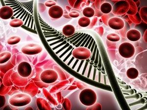 Японские ученые нашли гены рака крови