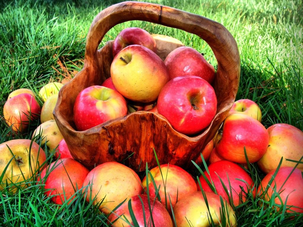 Яблочная кожура предотвращает рост раковых опухолей