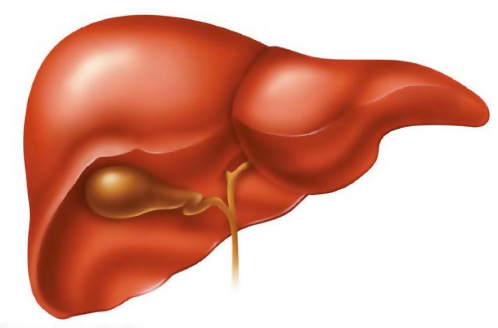 Гепатит С – фактор риска развития рака печени