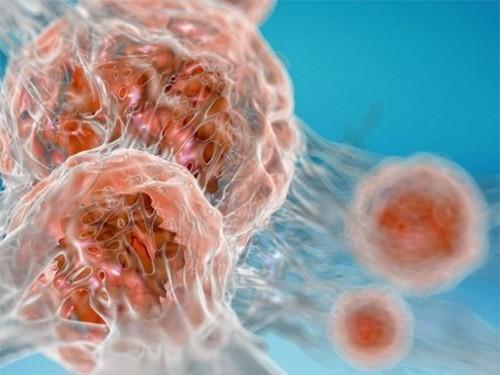 Смертельно больных онкопациентов попросят пожертвовать образцы крови для науки