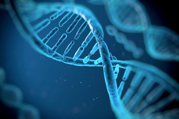 Наши клетки