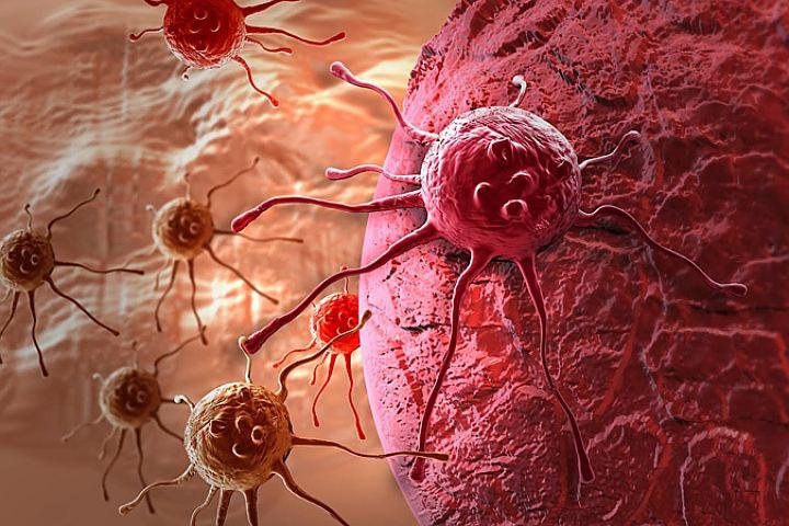 В поединке с раковой опухолью: эффективное лечение народными средствами