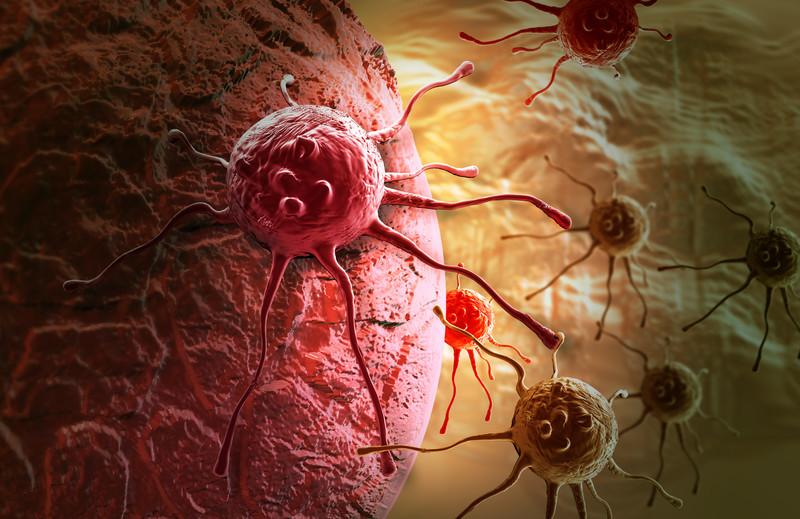 Морфий может способствовать развитию онкологических заболеваний