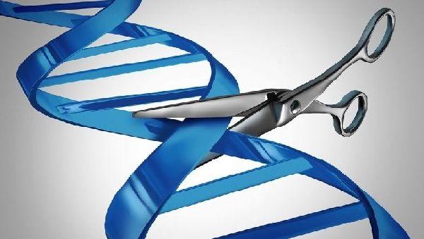 Генная терапия рака: новые надежды