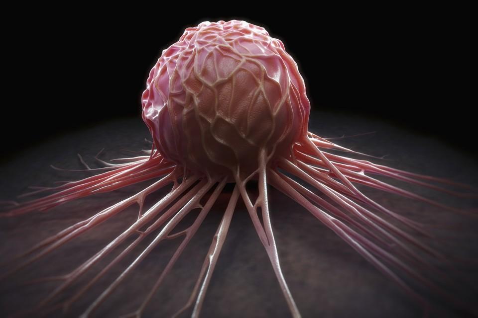 Рак можно предотвратить?