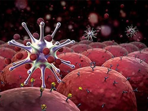 Препарат в два раза увеличил выживаемость пациентов с раком поджелудочной железы