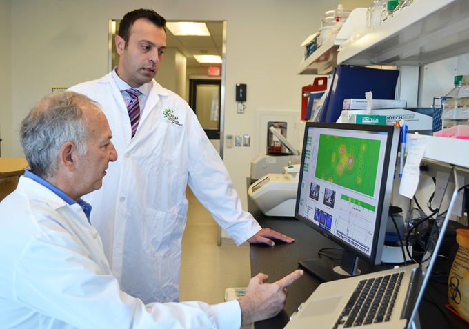 Исследователи нашли истоки агрессии рака поджелудочной железы
