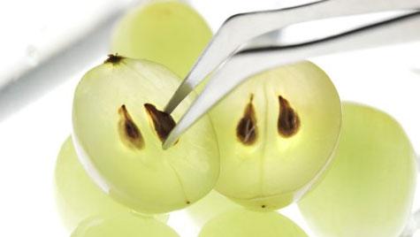 Виноградные косточки повышают эффективность химиотерапии