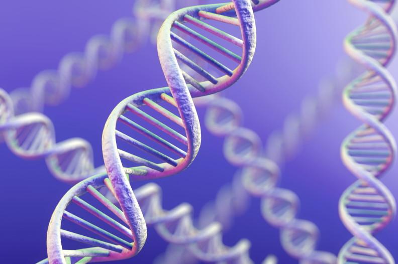 Ученые нашли противораковый ген