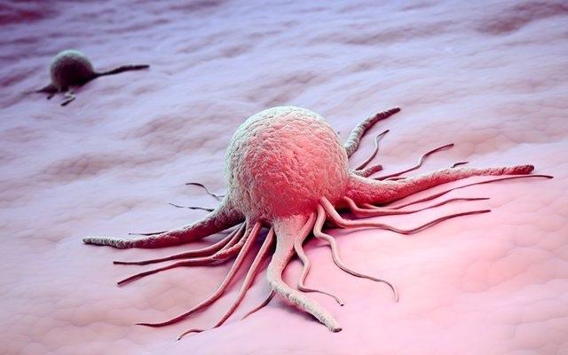 Электрические сигналы способны контролировать активность опухолей