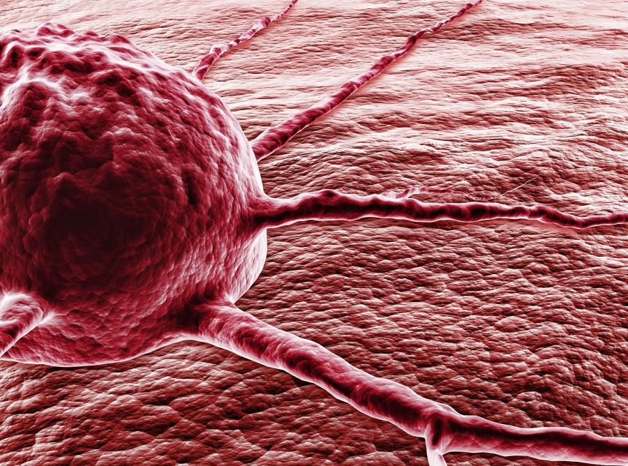 Мужчины чаще болеют и умирают от рака