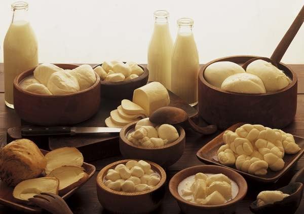 Жирные молочные продукты повышают риск летального исхода при раке