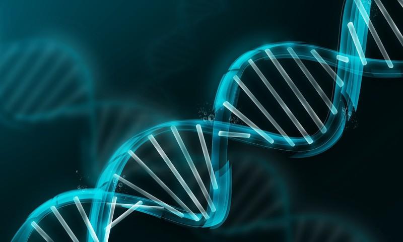 Обнаружены новые гены, отвечающие за распространение рака