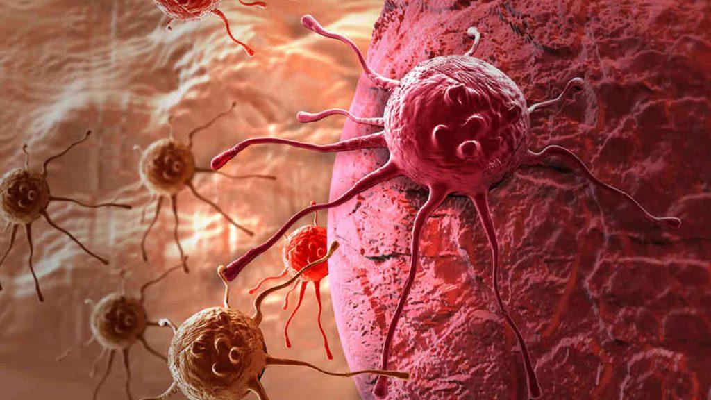 Новых идей терапии и профилактики рака все больше