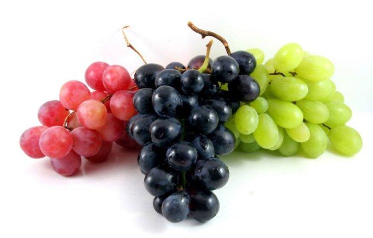 Употребление этих ягод может стать эффективной профилактикой рака кожи