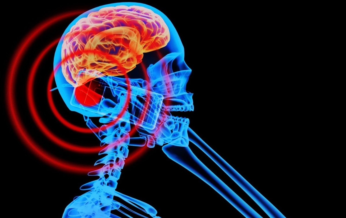 Датские ученые не нашли связи между мобильными телефонами и раком мозга