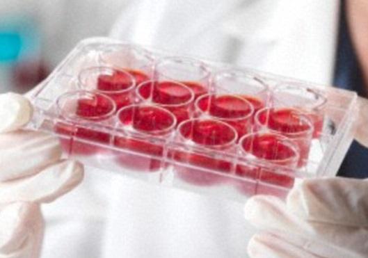 Российские ученые: Лекарство от рака появится через три года
