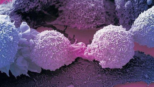 Сон поможет вылечить рак