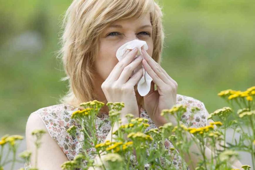Аллергия на растения повышает риск развития рака крови
