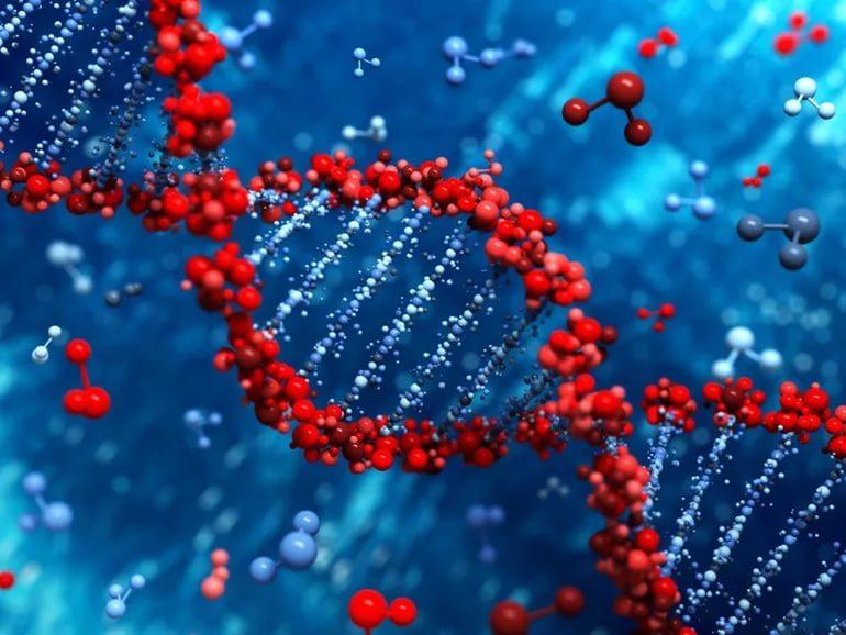 Ген останавливает рак яичников