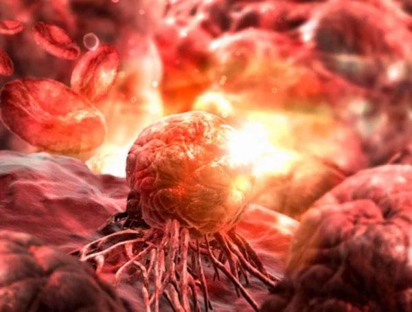 ДВФУ и «Мерк» займутся совместной разработкой лекарств от онкопатологий