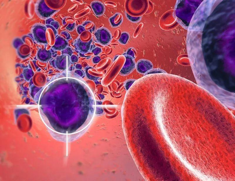 Развитие лейкемии вызывают 9 мутировавших генов