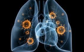 Туберкулез легких: формы, степени, развитие и лечение