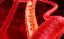 Иммунную систему можно научить побеждать рак