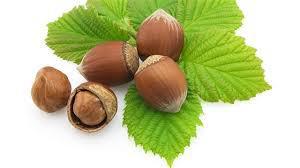Лесные орехи защищают от смерти при раке кишечника