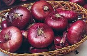 Известный всем овощ оказался мощным лекарством от рака!