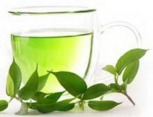 Зеленый чай в противостоянии с раком простаты