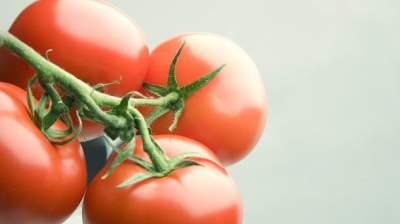 Этот популярный овощ существенно уменьшает шансы заболеть раком