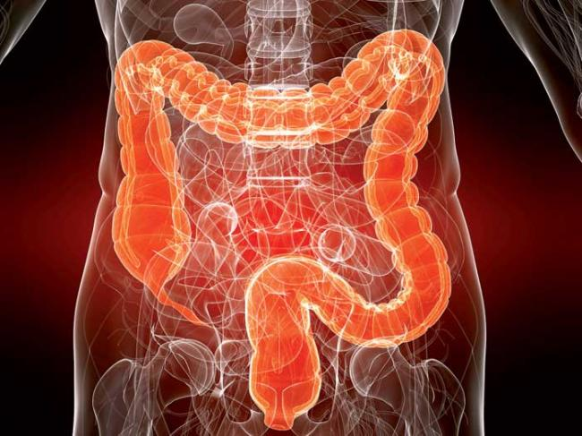 Комфорт в кишечнике — здоровье организма