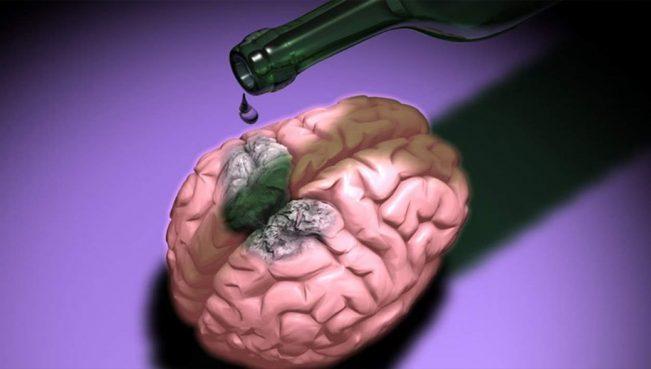 Умеренное употребление алкоголя связали с повреждениями головного мозга