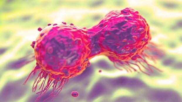 Новое лечение рака молочной железы имеет меньше побочных эффектов