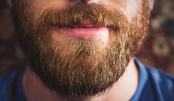 Борода может снизить риск развития рака кожи