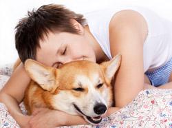 Диагностировать рак будут собаки