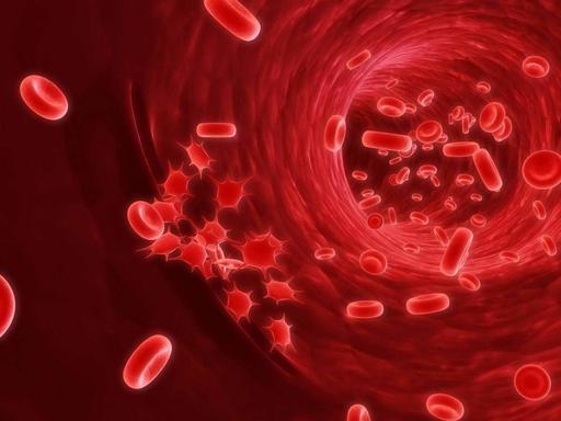 Названы первые признаки рака крови