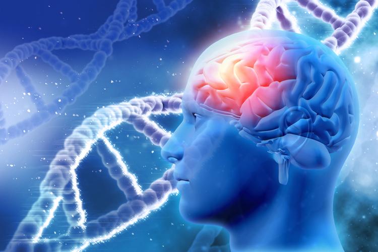 Неизлечимый рак мозга оказался десятью разными видами болезни