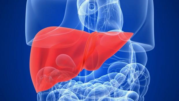 Риск развития рака печени не уменьшается после выздоровления пациента от гепатита В