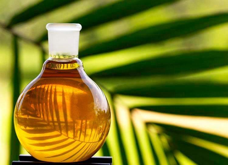 Развенчаны самые популярные мифы о пальмовом масле