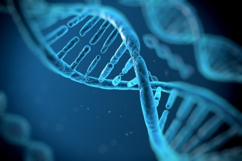 Гены влияют на излечение от рака