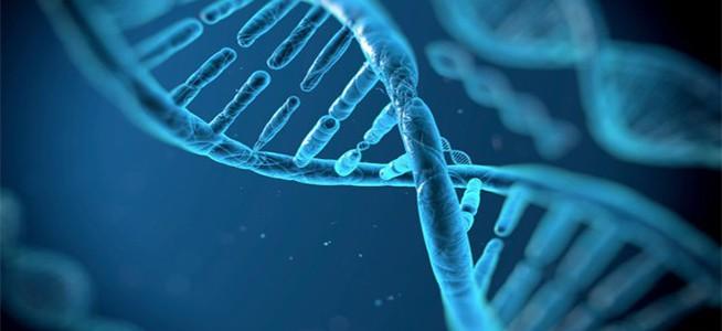 Новая технология генного редактирования поможет лечить рак и диабет