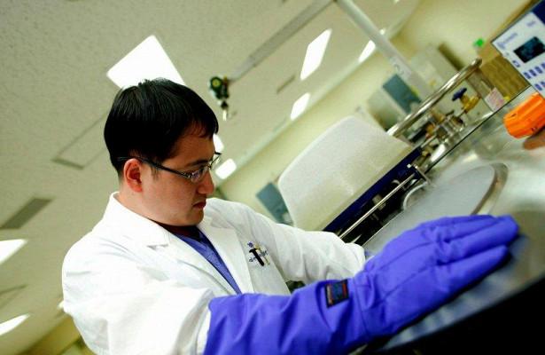 Найден белок, который защищает раковые опухоли от уничтожения