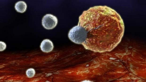 В появлении рака люди виноваты сами